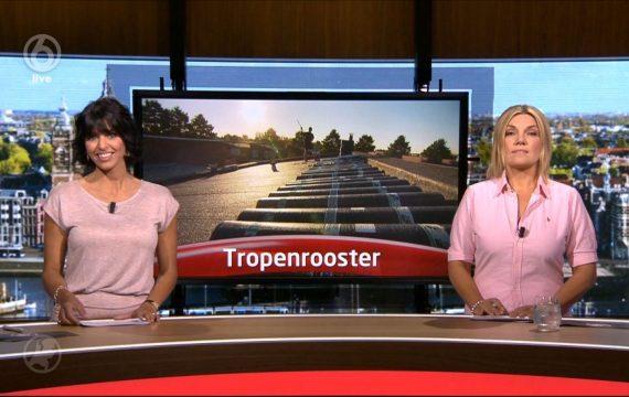Dakdekker Rudy op SBS6 nieuws Item Tropenrooster - Primodak